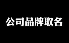 王通:公司品牌如何取个好名字