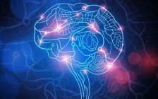 王通:客户大脑中模拟成交的文案