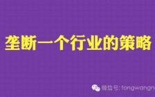 王通:垄断一个小行业的秘密营销策略