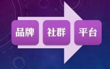 王通:个人品牌·专业社群·行业平台